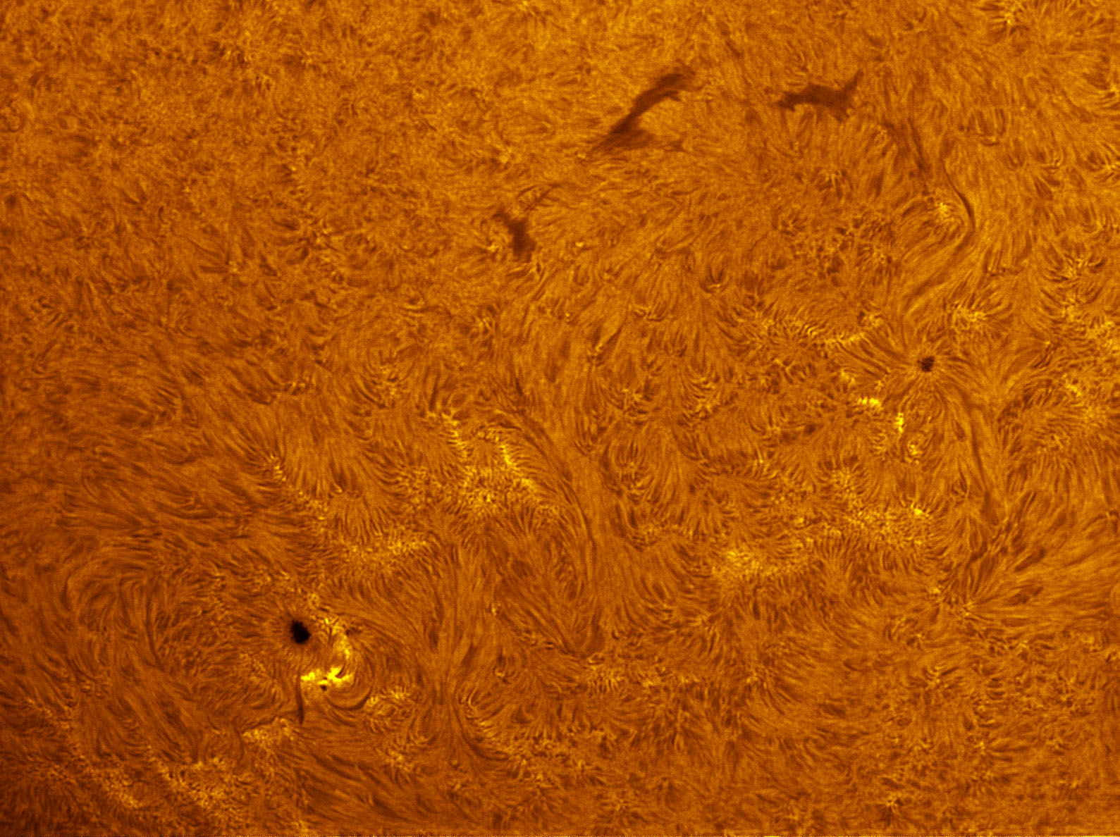 Sunspots 1552 and 1553 in h-alpha 08/25/2012