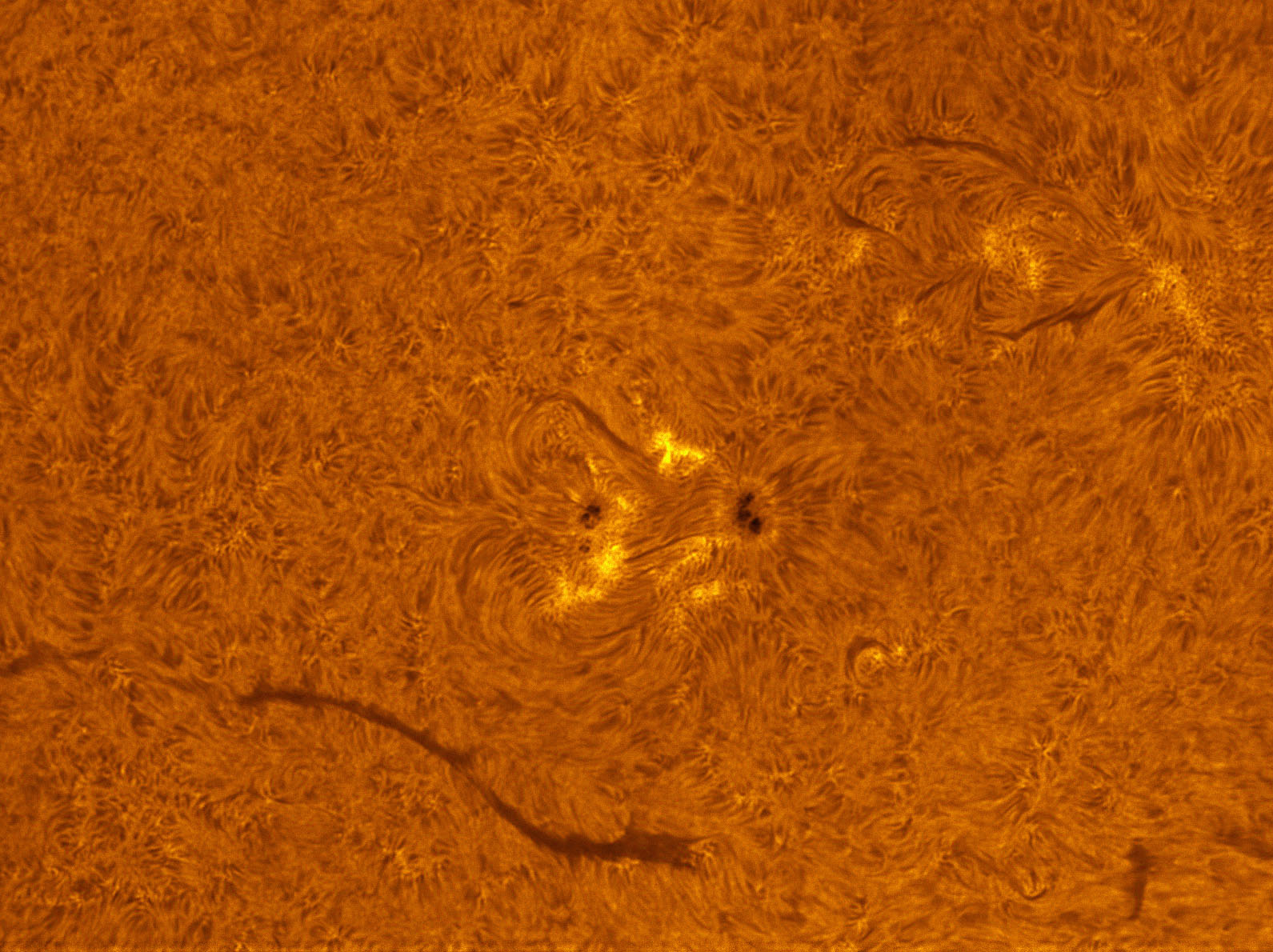 Sunspot 1554 in h-alpha 08/25/2012
