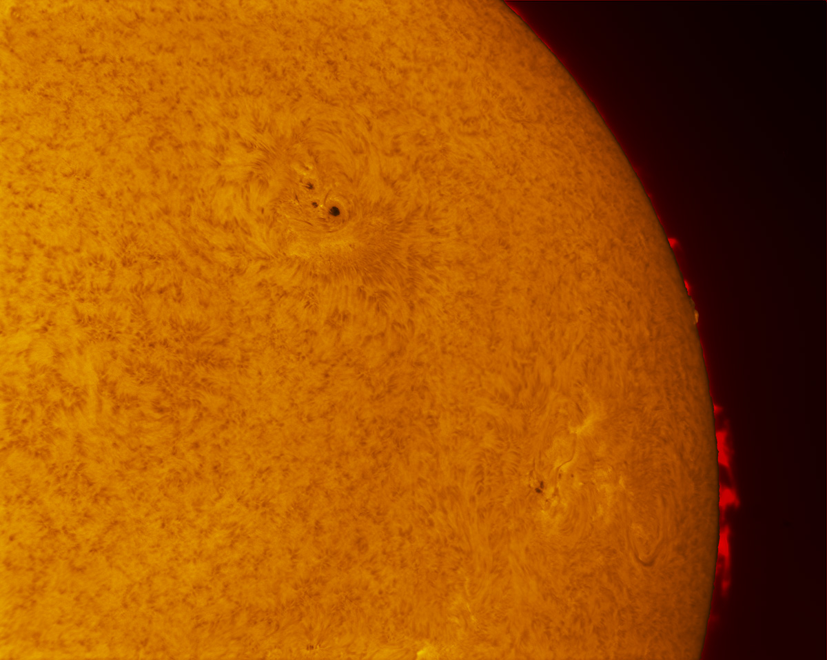 Sunspots 2157 and 2158 in h-alpha 09/13/2014