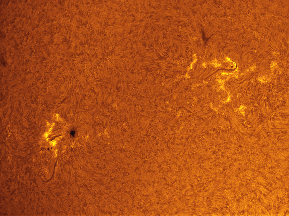 Sunspots 1593 and 1596 in h-alpha 10/21/2012